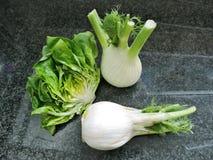 莴苣和茴香 免版税图库摄影