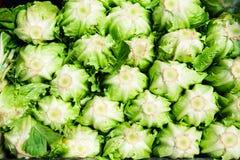 莴苣在市场上 图库摄影