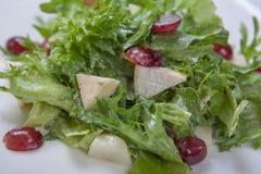 莴苣新鲜的沙拉用与果子片断的甜调味汁  库存照片