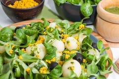 莴苣沙拉、土豆和豆腐 库存图片