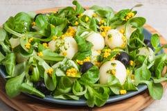 莴苣沙拉、土豆和豆腐 免版税库存照片