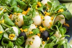 莴苣沙拉、土豆和豆腐 库存照片