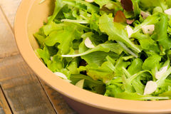 莴苣沙拉用大蒜 库存照片