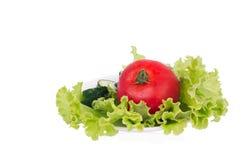 莴苣用切的说谎在板材的黄瓜和蕃茄 免版税图库摄影