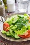 莴苣,蕃茄,黄瓜,午餐的鲕梨沙拉 库存照片