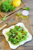 莴苣离开与石榴种子穿戴用柠檬汁和橄榄油 节食在板材的素食主义者沙拉,沙拉的成份 免版税库存照片