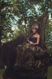 神仙的妇女在不可思议的森林里 库存照片 & 图像图片