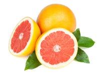 苦涩新鲜的葡萄柚对分水多 免版税库存图片