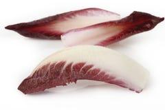 苦苣生茯叶子 免版税库存图片