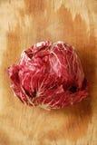 苦苣生茯特雷维索 库存照片