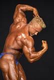 英俊的中年男性爱好健美者 图库摄影