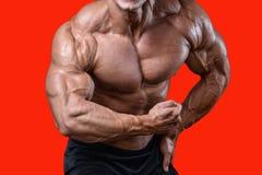 英俊的加大饮食的训练的力量运动人干涉 库存图片