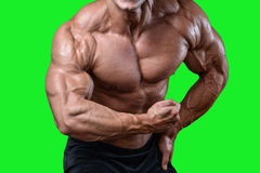 英俊的加大饮食的训练的力量运动人干涉 免版税库存图片