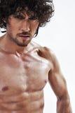 英俊的半人肌肉裸体纵向 库存图片