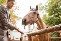 英俊的年轻人爱抚一匹浅褐色的马在农场 库存图片