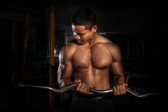 英俊的年轻人适合了式样出现锻炼训练的肌肉白种人人在增重的健身房的加大干涉 库存图片