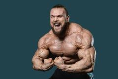 英俊的显示在健身房的适合白种人肌肉人力量 库存图片