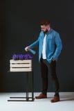 年轻英俊的有胡子的男性行家,打扮在蓝色牛仔布衬衣,站立户内和在木箱的浇灌的花 图库摄影
