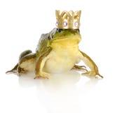 英俊的王子 库存图片