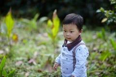 英俊的男婴 库存图片