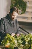 英俊的种植者检查和照料植物 库存照片