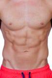 英俊的肌肉的人 免版税库存照片
