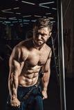 英俊的运动人执行三头肌的锻炼在健身房 免版税库存图片