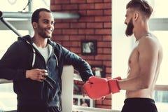 英俊的年轻拳击手 库存图片