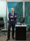 英俊的CEO的画象 库存图片