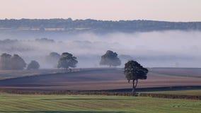 英国乡下的有薄雾的领域秋天 影视素材