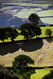 英国乡下的视图 库存图片