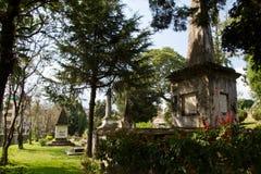 英国公墓在加德满都,尼泊尔 免版税库存图片