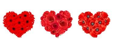 英国兰开斯特家族族徽、大丁草和鸦片花的心脏 也corel凹道例证向量 皇族释放例证