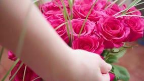 英国兰开斯特家族族徽美丽的开花  做花束花特写镜头 股票视频