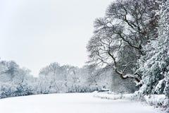 英国农村乡下冬天雪横向 免版税图库摄影