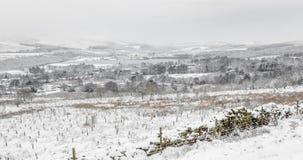英国冬天风景场面 免版税库存照片