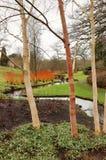 英国冬景花园 免版税库存照片