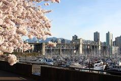 英国加拿大哥伦比亚春天温哥华 免版税库存照片