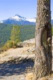 英国加盖的哥伦比亚山雪温哥华 免版税库存图片