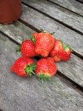 英国夏天本地出产的草莓 图库摄影