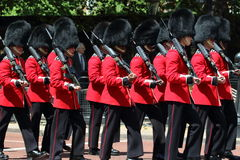 英国守卫皇家 免版税库存照片