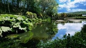 英国庭院在康沃尔郡 库存图片