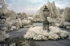 英国庭院红外线 图库摄影