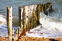 英国海滩groynes 免版税库存照片