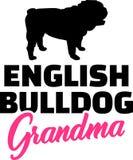 英国牛头犬祖母 皇族释放例证