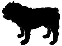 英国牛头犬 皇族释放例证