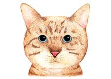 英国猫纵向 额嘴装饰飞行例证图象其纸部分燕子水彩 免版税库存照片