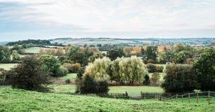 英国的乡下和领域 库存照片