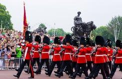 英国皇家卫兵的荣誉称号 图库摄影