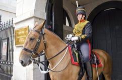 英国皇家家庭骑兵 库存图片